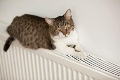 Wärme lindert die Schmerzen bei Blasenentzündung.