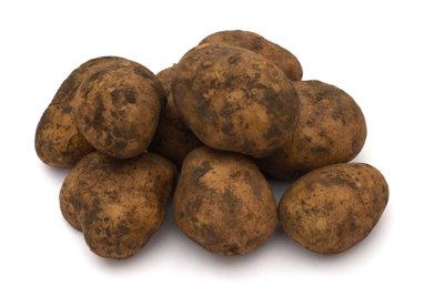 Kartoffeln müssen richtig gelagert werden.
