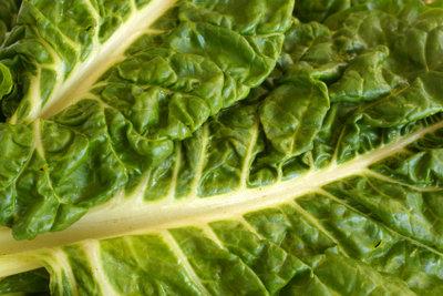 Mangold ist eine vitaminreiche Gemüsepflanze.