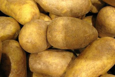 Vorsicht bei Kartoffeln mit Grünfärbung