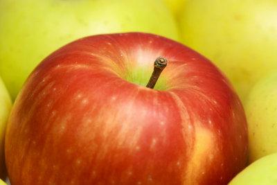 Bieten Sie frische Bioprodukte an.