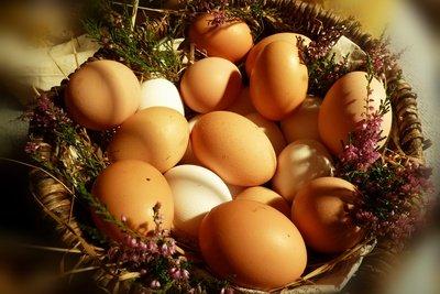 Hühnereier lassen sich konservieren.