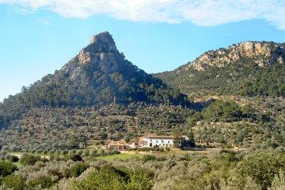 Auf Mallorca können Sie gut wandern.
