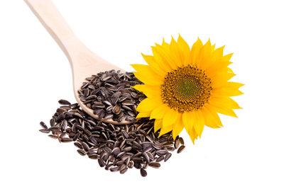 Sonnenblumenkerne sind sehr gesund.