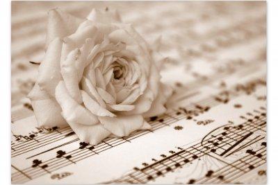 Noten sind für Musiker lebenswichtig.