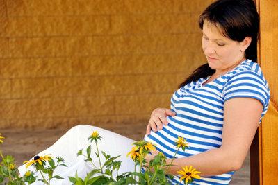 Kräuter können die Schwangerschaft beeinflussen.