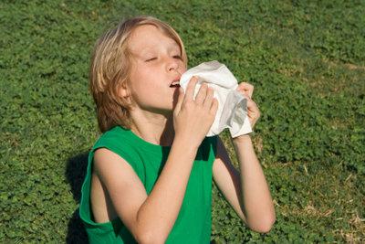 Eine Gräserallergie verursacht häufig Schnupfen.