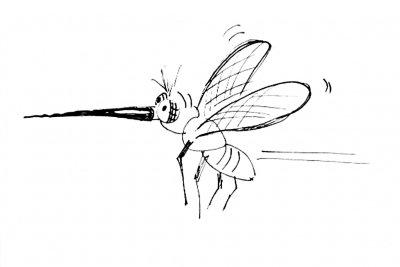 So bekämpfen Sie Mücken richtig.
