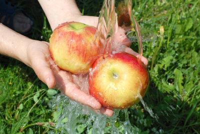 Nicht nur frisch sind Äpfel lecker.