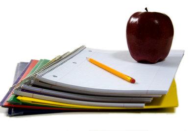 Entscheiden Sie Schule oder Privatlehrer!