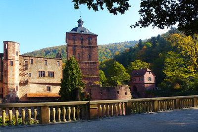 Das Heidelberger Schloss.