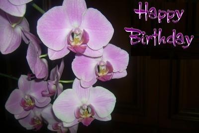 Feiern Sie mit Spaß Ihren Geburtstag.
