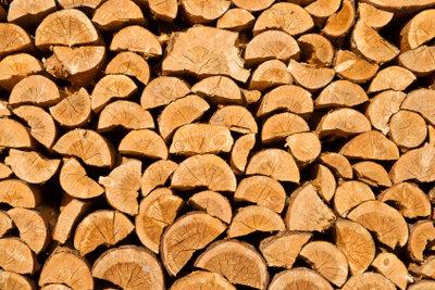 Holz ist ein gutes Referatsthema.
