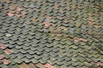 Dachziegel können erneuert werden.