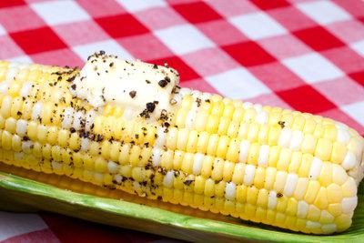 Maiskolben sind ein feiner Snack.