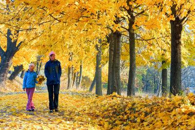 Spaziergänge tun bei leichter Krankheit gut.
