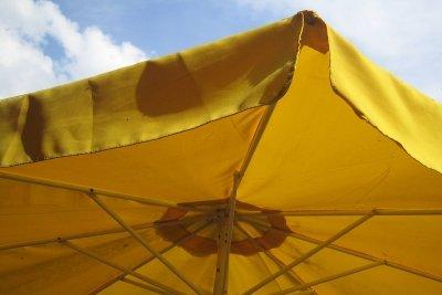 Gelb zieht kleine schwarze Insekten an.