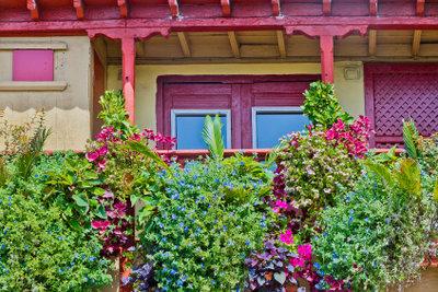Hängende Balkonpflanzen als Sommerdekoration