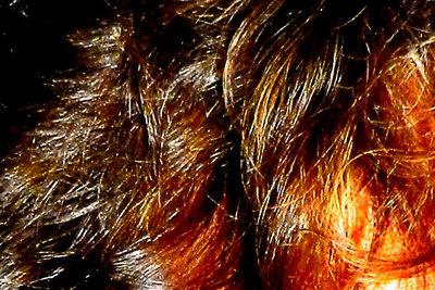 Kastanie - eine warme Haarfarbe