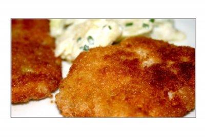 Leckere Fischgerichte - leicht  gemacht.