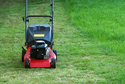 Nachdem Sie das hohe Gras gekürzt haben, können Sie den Rasen wie gewohnt mähen.