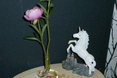 Pfingstrosen sind ein besonderer Hingucker in Vasen.