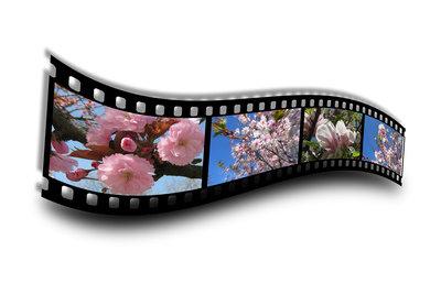 Mswmm-Dateien gehören zum Movie Maker.