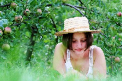 Bäume haben normalerweise ein starkes Immunsystem.