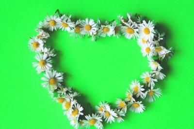 Blumenkette in Herzform aus Gänseblümchen binden