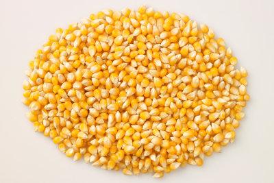 Maiskörner lassen sich in Salaten verwenden.