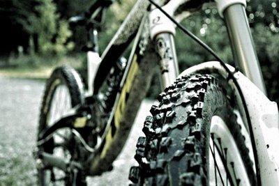 Dirt/Street-Bikes gibt es auch für Einsteiger.