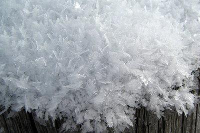 Schneeflocken lassen sich konservieren.
