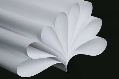 Mit Fleurogamie zur Lilie aus Papier.