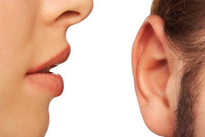 Das Ohr besteht oben aus Knorpeln.