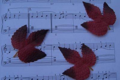 Noten sind die Buchstaben der Musik.