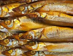 Geräucherte Makrele Schwangerschaft
