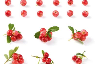 Die Cranberry ist gut für die Blase.