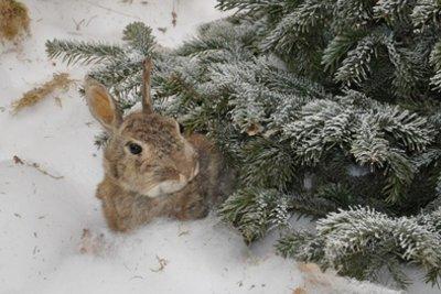 Fit für den Winter im Freien?