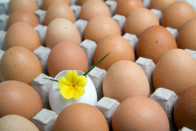 Kaufen Sie Eier von glücklichen Hühnern.