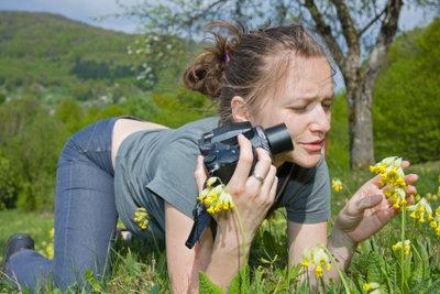 Betrachten Sie genau, wie mit einem Fotoapperat.