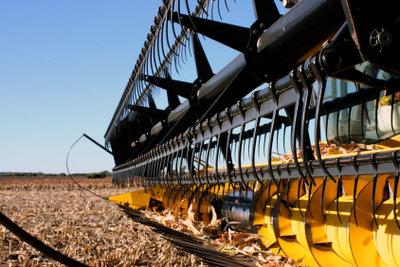 Ackerflächen werden häufig zu intensiv genutzt.