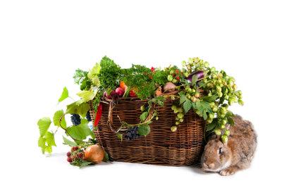 Frisches Obst und Gemüse für Hasen