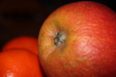 Die Apfelernte zum richtigen Zeitpunkt durchführen