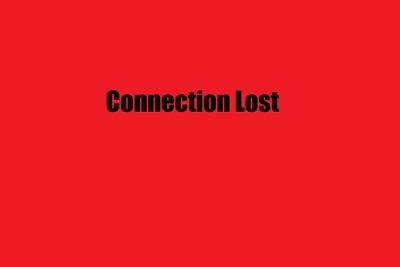 Ohne Verbindung ist ein Multiplayerspiel unmöglich.