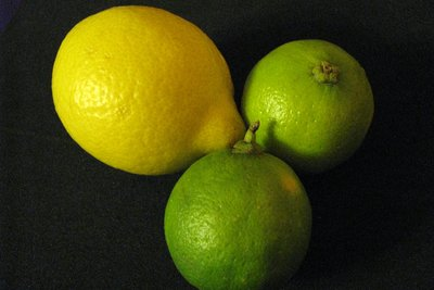 Limonen sind groß und gelb, Limetten klein und grün.