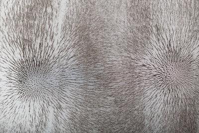 Feldlinien machen die Magnetstärke sichtbar.