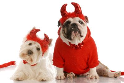 Kostüme für zwei Personen - mit diesen Anregungen finden Sie das Richtige.
