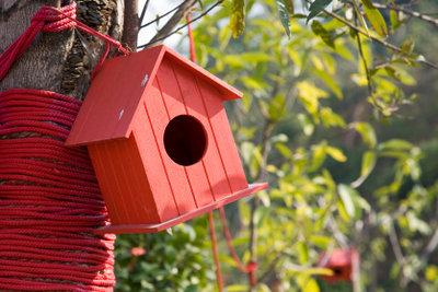 Den Antrag auf Wohnungsbauprämie richtig ausfüllen