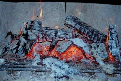 Wasser führende Kaminöfen mit Holz als Brennstoff sind effektiv.
