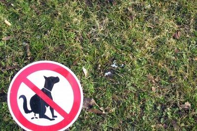 Hundekot verboten - das Schild selber machen